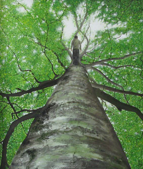 img_climbing-trees
