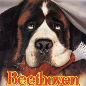 beethoven-dog-1